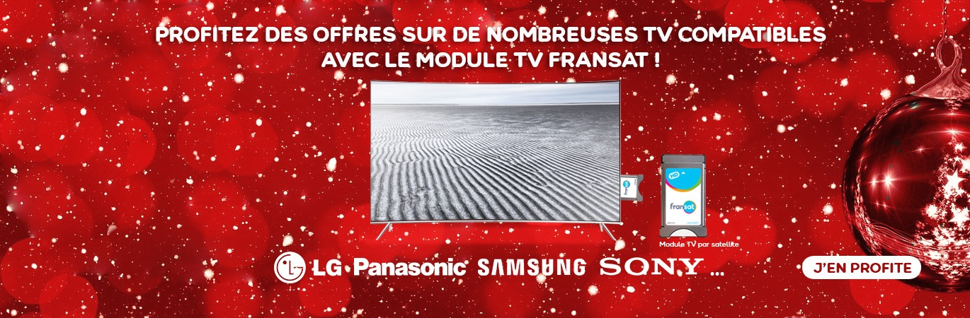Promotions de Noel TV et Modules