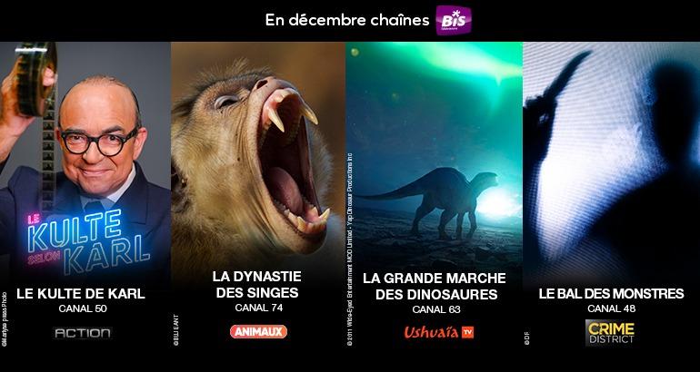 Programme en decembre sur BIS TV
